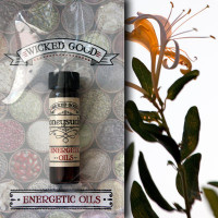 Honeysuckle Energetic Oil