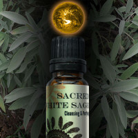 Sacred White Sage World Magic Oil