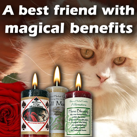 A best friend with magical benefits