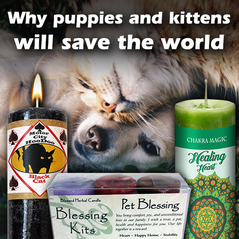 Why puppies and kittens will save the world